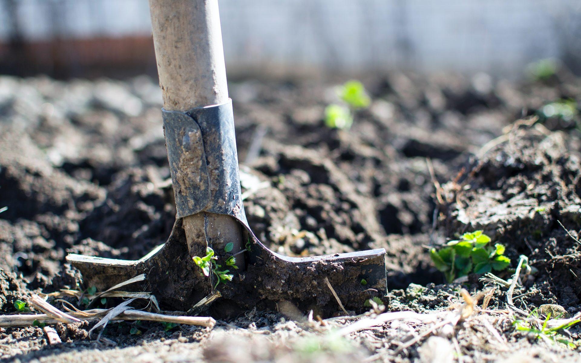 Záhrada nerastie sama